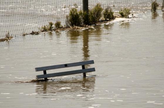 APWU: Union Plus Offers Help for Survivors of West Virginia Floods
