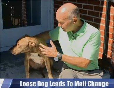 Video: Unrestrained dog costs Wichita neighborhood mail door deliveries