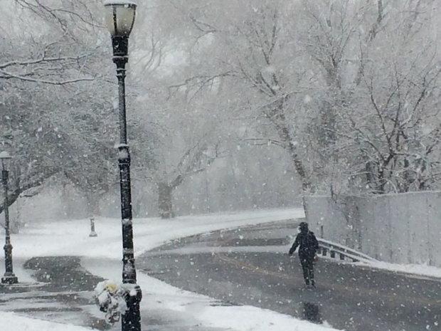 Postal Service Weather Update – Winter Storm Stella