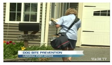 Video: Postal Service Provides Safety For Employees to Help Against Dog Attacks
