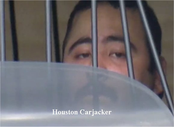 Video: Suspect in custody after Houston postal worker carjacked, mail truck stolen