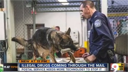 Video: Postal Inspectors Finding 880% More Drugs In Packages This Year