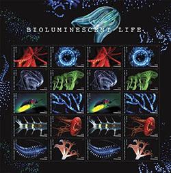 USPS celebrates dazzling bioluminescent life on Forever stamps